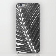palm 2 iPhone & iPod Skin