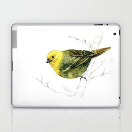 Mr Mohua , yellowhead New Zealand native bird Laptop & iPad Skin