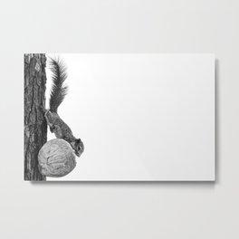 Squirrel Tree-t Metal Print