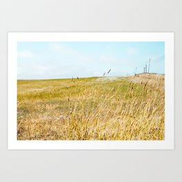 The Sound Of Crickets In Tall Grass Art Print