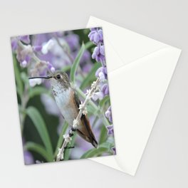 Ms. Hummingbird's Break Time in Mexican Sage Stationery Cards