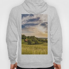 Morning in a small village Hoody