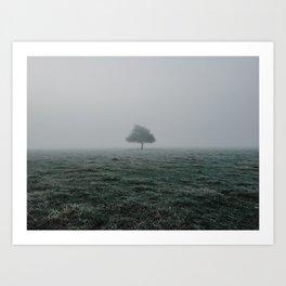 Solo Tree Art Print