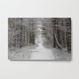 Winter woodlands Metal Print