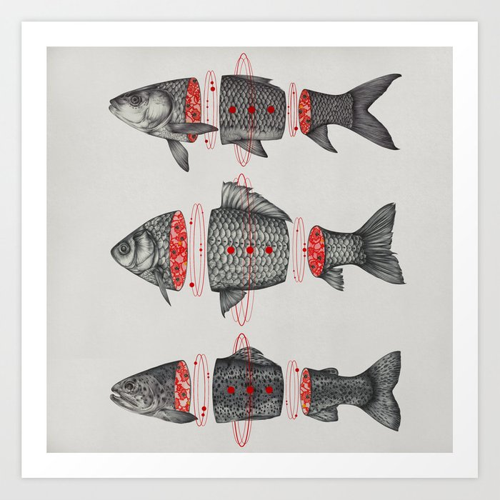 Sashimi All Art Print