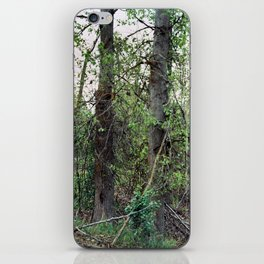 two trees (spring 2015) iPhone Skin