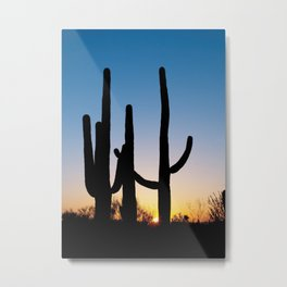 Carol M Highsmith - Saguaro Cactus near Tucson, Arizona 3 Metal Print
