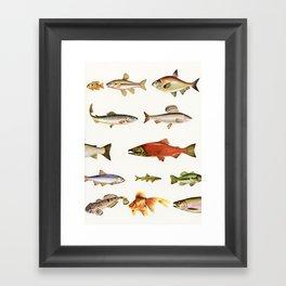 Fishing Line Framed Art Print