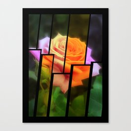 Pink Roses in Anzures 3 Tinted 2 Canvas Print
