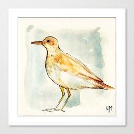 Waiting Bird Canvas Print