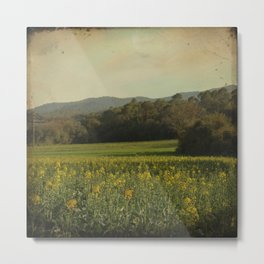 Once Upon a Time a Field of Flowers Metal Print
