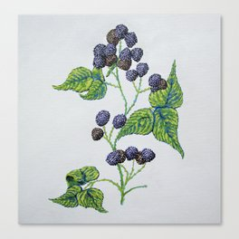 The Ontario Raspberry Canvas Print