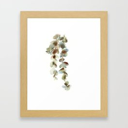 Eucalyptus leaves Framed Art Print