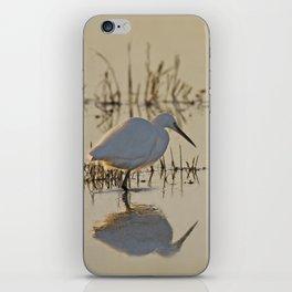 Little Egret at Dusk iPhone Skin