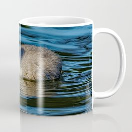 Mute Swan Cygnet Coffee Mug
