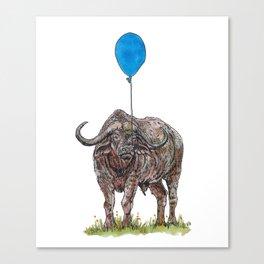 Buffalo with balloon Canvas Print
