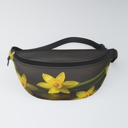 Golden daffodils quintet Fanny Pack