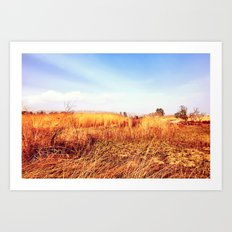 Field of Gold (from 'King Midas' series) Art Print