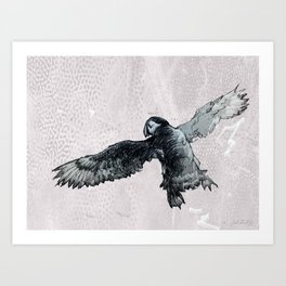 Soar the puffin Art Print