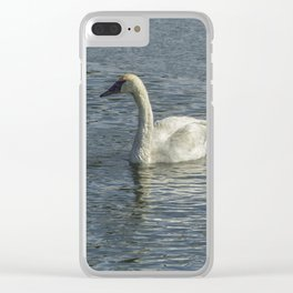 Two Trumpeter Swans at Oxbow Bend Clear iPhone Case