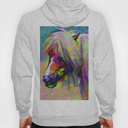 Painted Pony Hoody