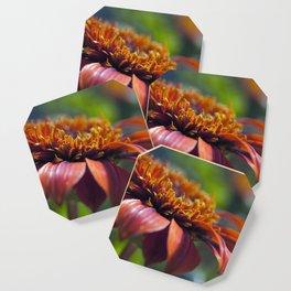 Beautiful Orange Flower Macro Photo Coaster