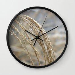 Ice on Ornamental Grass Wall Clock