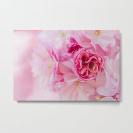Cherry blossom pink Metal Print