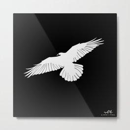 Raven White Metal Print