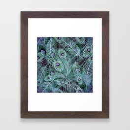 Peacock of Another Color Framed Art Print