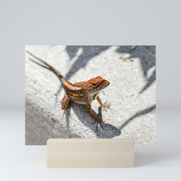 SELECTIVE FOCUS PHOTOGRAPHY OF RED FROG Mini Art Print