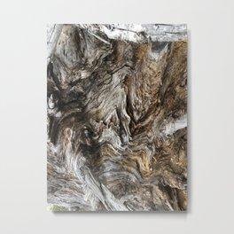 Tree Photography Metal Print