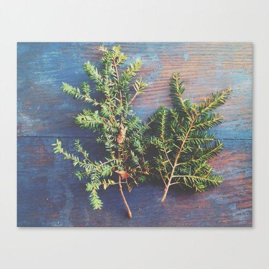 Hemlock on Blue Table Canvas Print