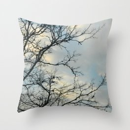 Scarred Skys Throw Pillow