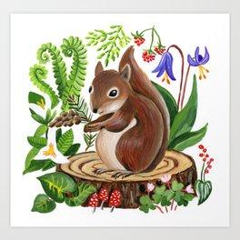 Douglas Squirrel Art Print
