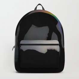 Silhouette of Color Backpack