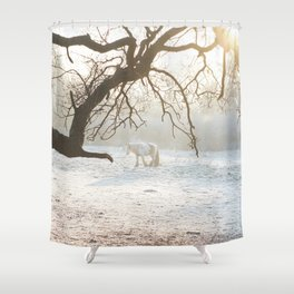 Winter Ponies Shower Curtain