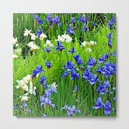 BLUE & WHITE  IRIS FLOWER GARDEN Metal Print