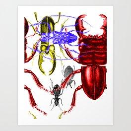 Beetleverse Art Print