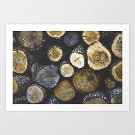 Stacked wood Art Print