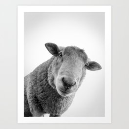 Shirlee the Sheep Art Print