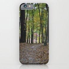 Fall Pathway Slim Case iPhone 6s