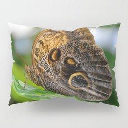 Owl Eye Butterfly by Teresa Thompson Pillow Sham