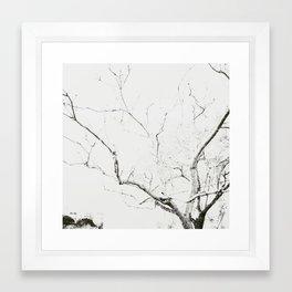 Lines #3 Framed Art Print