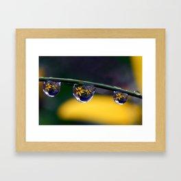 tripple yellow petals Framed Art Print