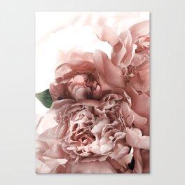 Blush Pink Floral Canvas Print