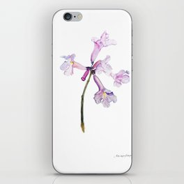 Flowers of the tree *Handroanthus sp* iPhone Skin