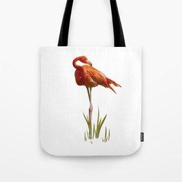 The Florida Flamingo Tote Bag