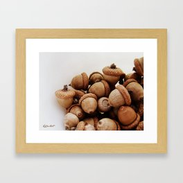 Acorn Love Framed Art Print