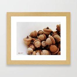 Acorn Love Framed Art Print